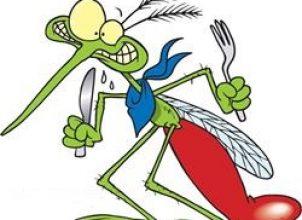 Sivrisinek Kaşıntısına Doğal Yöntemler