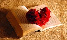 Aşk Dedin Ya Adıma…