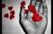 Hareketli Sevgi İfadeleri