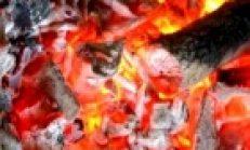 Ateş Koru