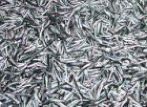 Hamsi balığı