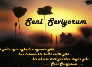 SENİ SEVİYORUM